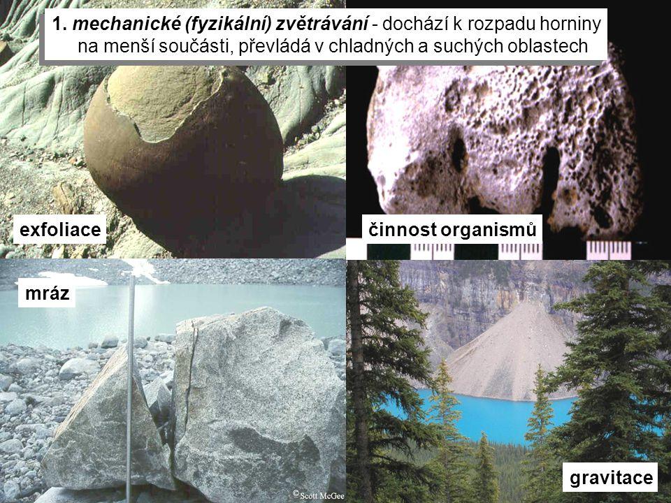 exfoliacečinnost organismů mráz gravitace 1. mechanické (fyzikální) zvětrávání - dochází k rozpadu horniny na menší součásti, převládá v chladných a s