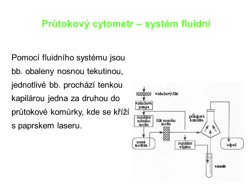 Průtokový cytometr – systém fluidní Pomocí fluidního systému jsou bb. obaleny nosnou tekutinou, jednotlivé bb. prochází tenkou kapilárou jedna za druh