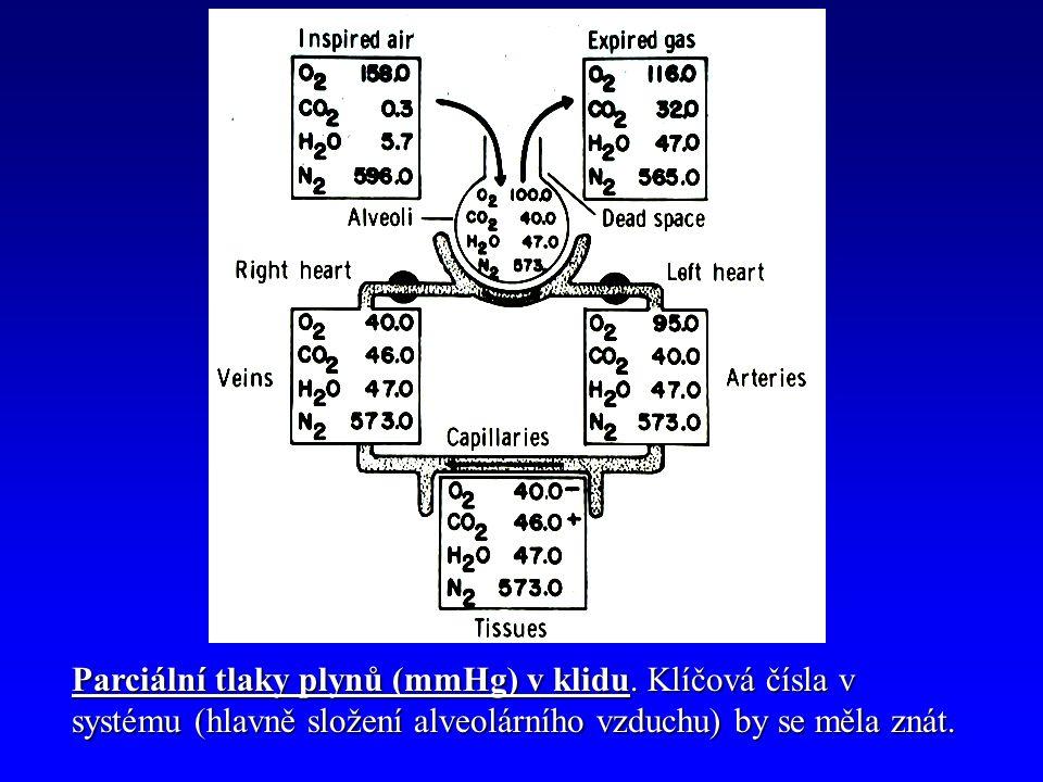 Parciální tlaky plynů (mmHg) v klidu.