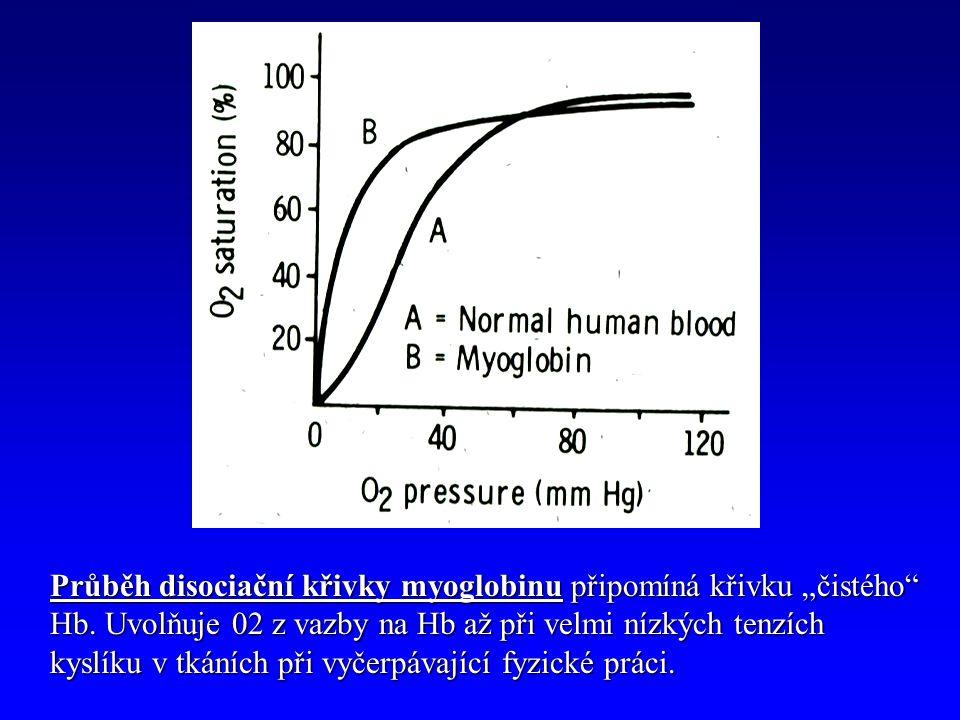 """Průběh disociační křivky myoglobinu připomíná křivku """"čistého Hb."""