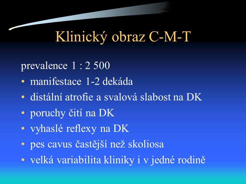 Klinický obraz C-M-T prevalence 1 : 2 500 manifestace 1-2 dekáda distální atrofie a svalová slabost na DK poruchy čití na DK vyhaslé reflexy na DK pes cavus častější než skoliosa velká variabilita kliniky i v jedné rodině