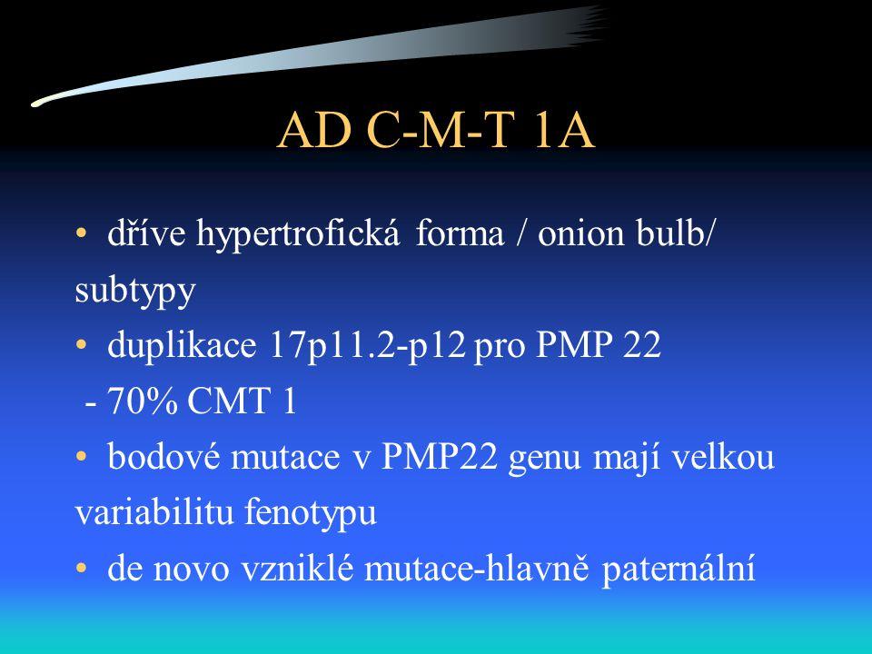 AD C-M-T 1A dříve hypertrofická forma / onion bulb/ subtypy duplikace 17p11.2-p12 pro PMP 22 - 70% CMT 1 bodové mutace v PMP22 genu mají velkou variabilitu fenotypu de novo vzniklé mutace-hlavně paternální