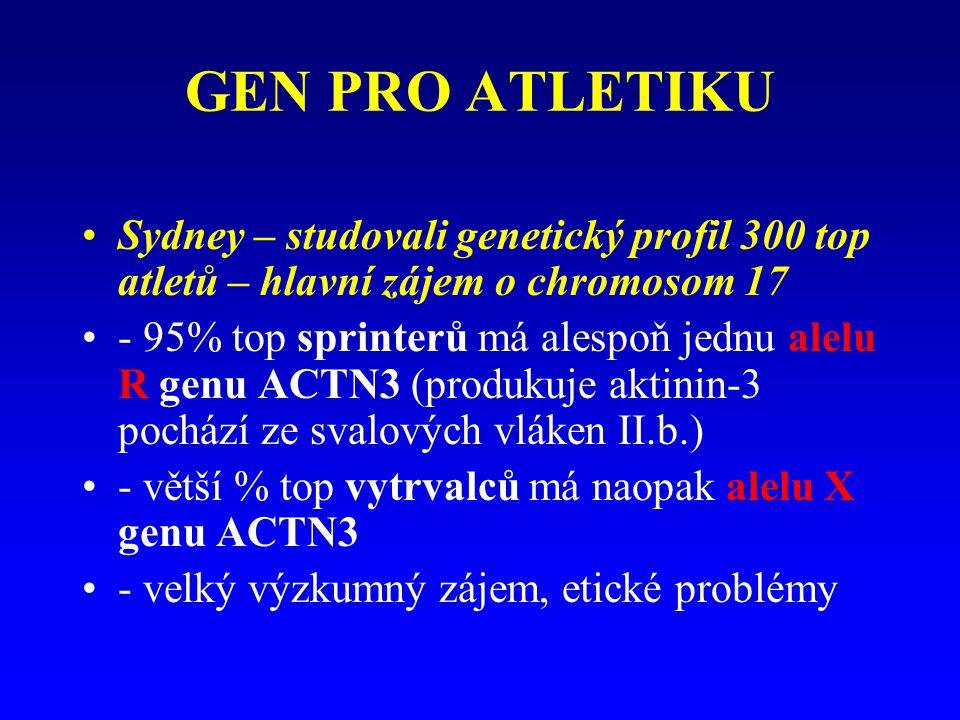 GEN PRO ATLETIKU Sydney – studovali genetický profil 300 top atletů – hlavní zájem o chromosom 17 - 95% top sprinterů má alespoň jednu alelu R genu ACTN3 (produkuje aktinin-3 pochází ze svalových vláken II.b.) - větší % top vytrvalců má naopak alelu X genu ACTN3 - velký výzkumný zájem, etické problémy