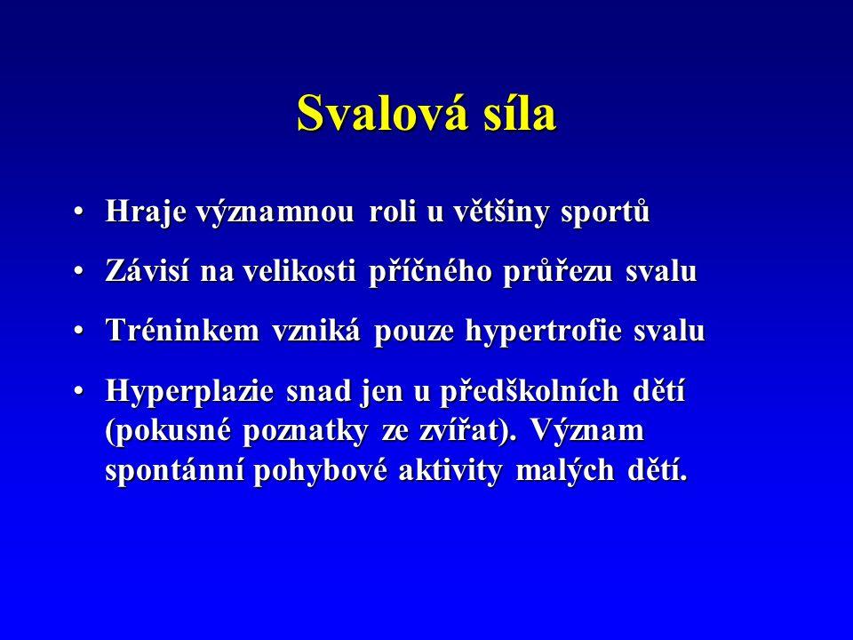 Svalová síla Hraje významnou roli u většiny sportůHraje významnou roli u většiny sportů Závisí na velikosti příčného průřezu svaluZávisí na velikosti