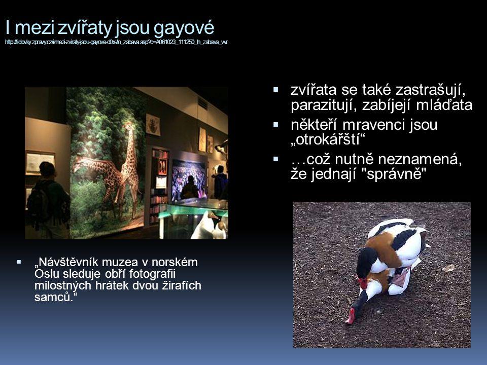 """I mezi zvířaty jsou gayové http://lidovky.zpravy.cz/i-mezi-zviraty-jsou-gayove-d0x-/ln_zabava.asp?c=A061023_111250_ln_zabava_vvr  """"Návštěvník muzea v norském Oslu sleduje obří fotografii milostných hrátek dvou žirafích samců.  zvířata se také zastrašují, parazitují, zabíjejí mláďata  někteří mravenci jsou """"otrokářští  …což nutně neznamená, že jednají správně"""