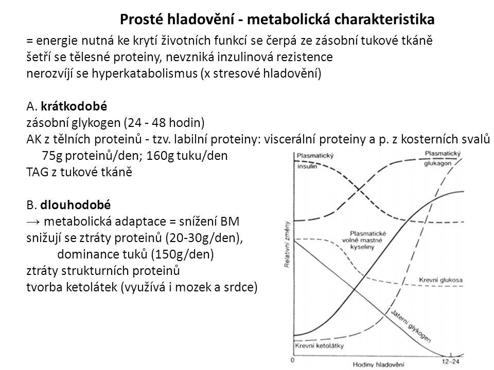 Prosté hladovění - metabolická charakteristika = energie nutná ke krytí životních funkcí se čerpá ze zásobní tukové tkáně šetří se tělesné proteiny, n