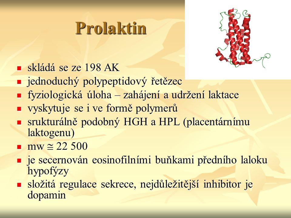 Prolaktin skládá se ze 198 AK skládá se ze 198 AK jednoduchý polypeptidový řetězec jednoduchý polypeptidový řetězec fyziologická úloha – zahájení a ud