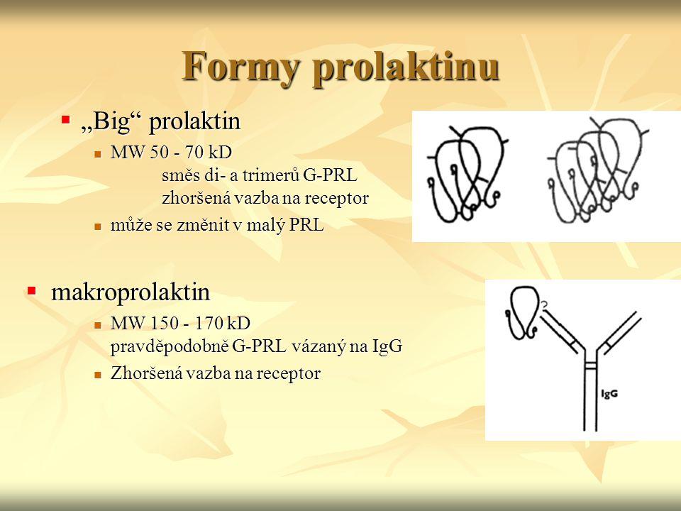 """Formy prolaktinu  """"Big"""" prolaktin MW 50 - 70 kD směs di- a trimerů G-PRL zhoršená vazba na receptor MW 50 - 70 kD směs di- a trimerů G-PRL zhoršená v"""