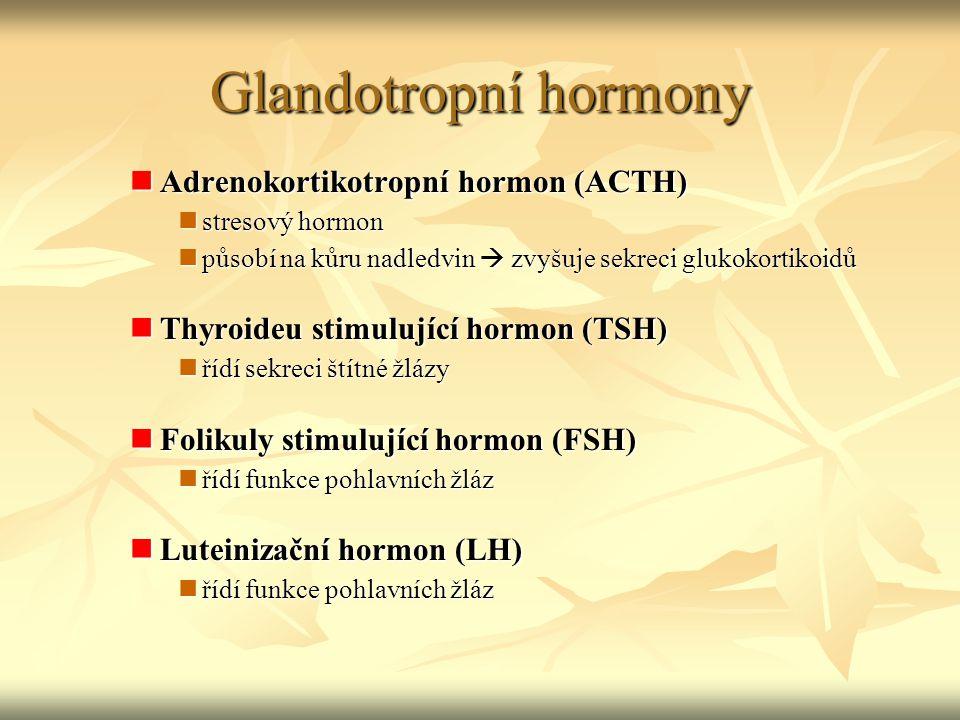 Glandotropní hormony Adrenokortikotropní hormon (ACTH) Adrenokortikotropní hormon (ACTH) stresový hormon stresový hormon působí na kůru nadledvin  zv