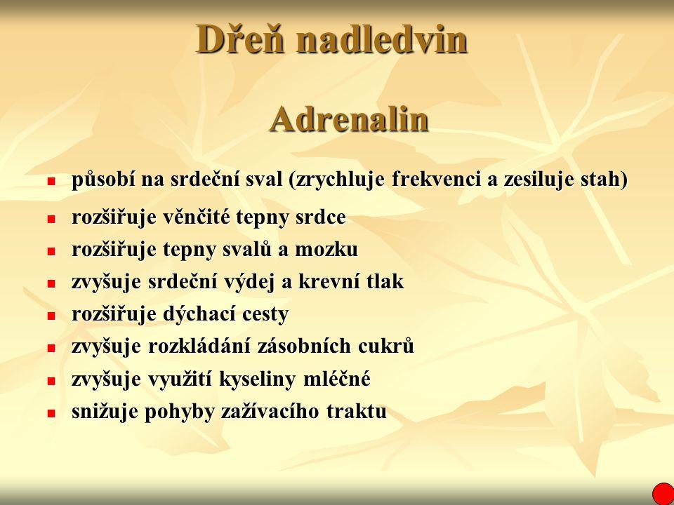 Dřeň nadledvin Adrenalin působí na srdeční sval (zrychluje frekvenci a zesiluje stah) působí na srdeční sval (zrychluje frekvenci a zesiluje stah) roz