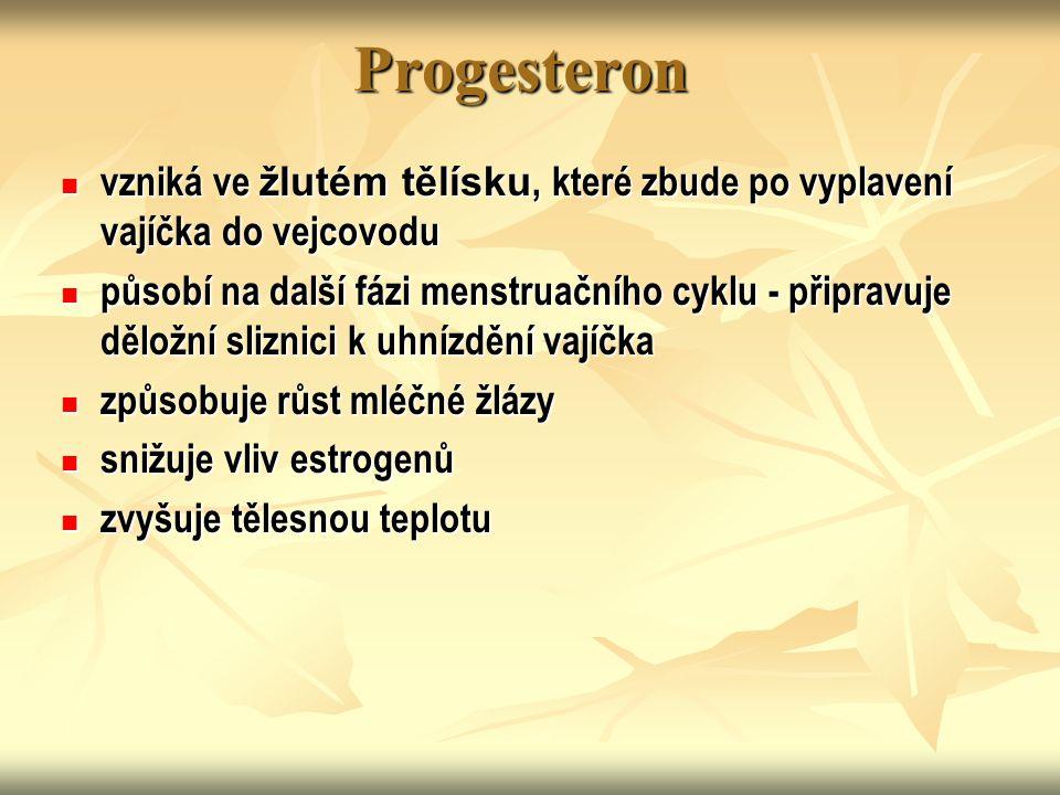Progesteron vzniká ve žlutém tělísku, které zbude po vyplavení vajíčka do vejcovodu vzniká ve žlutém tělísku, které zbude po vyplavení vajíčka do vejc
