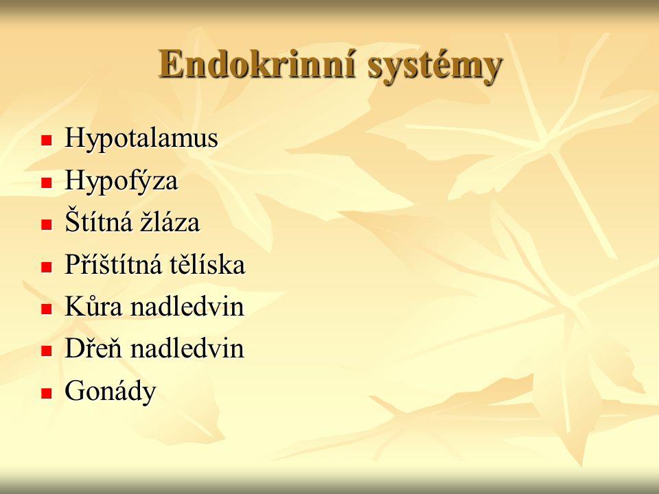 Hypotalamus zesilují zesilují zeslabují zeslabují Hypotalamus Adenohypofýza Regulační hormony (faktory) produkci adenohypofýzy Zadní lalok hypofýzy Přední lalok hypofýzy adiuretin oxytocin V hypotalamu se produkují i hormony, které cestují stopkou hypofýzy do zadního laloku, ze kterého se vylučují - adiuretin (reguluje vodní hospodářství) a oxitocin (reguluje stahy děložního svalstva)