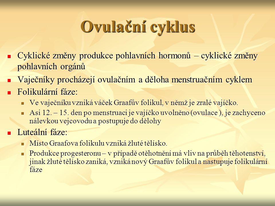Ovulační cyklus Cyklické změny produkce pohlavních hormonů – cyklické změny pohlavních orgánů Cyklické změny produkce pohlavních hormonů – cyklické zm