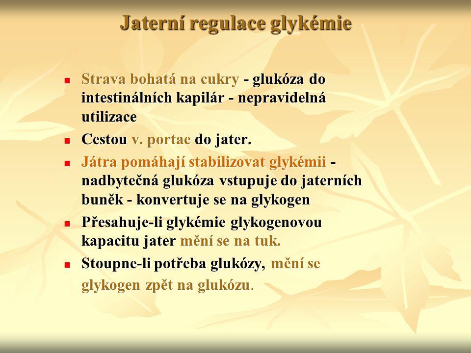Jaterní regulace glykémie Strava bohatá na cukry - glukóza do intestinálních kapilár - nepravidelná utilizace Strava bohatá na cukry - glukóza do inte