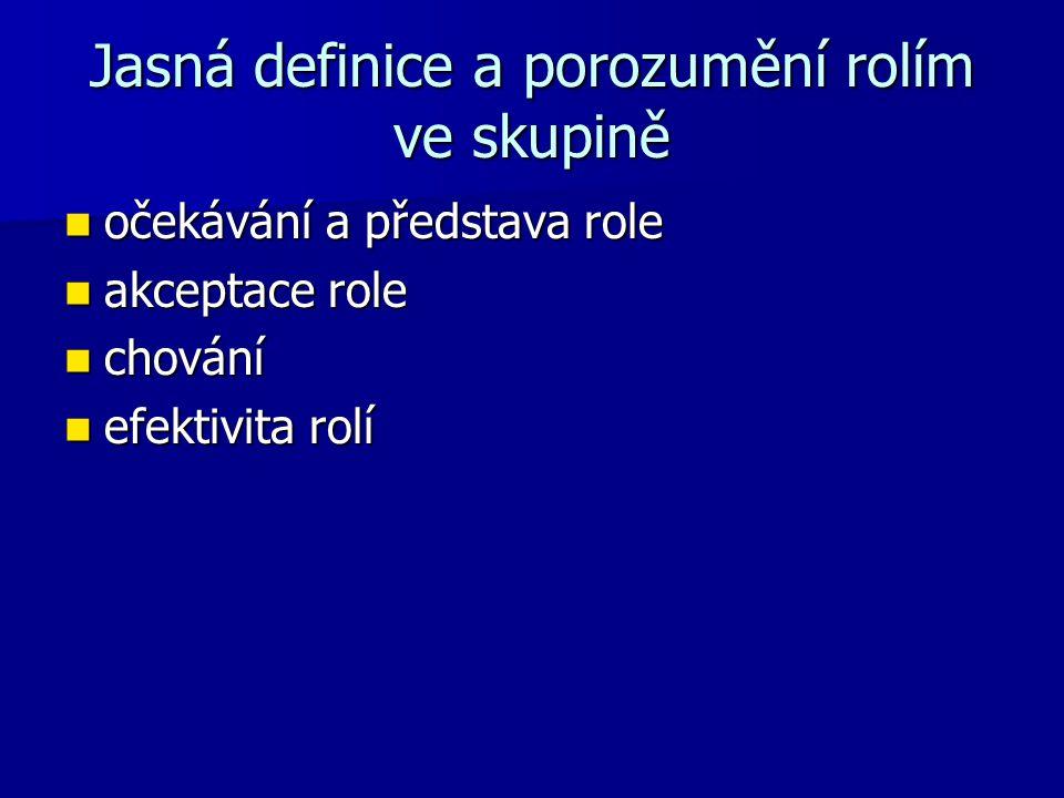 Jasná definice a porozumění rolím ve skupině očekávání a představa role očekávání a představa role akceptace role akceptace role chování chování efektivita rolí efektivita rolí