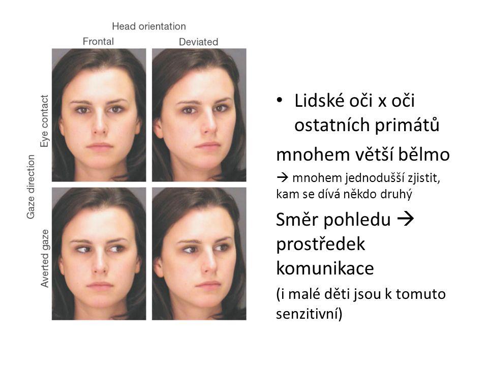 Lidské oči x oči ostatních primátů mnohem větší bělmo  mnohem jednodušší zjistit, kam se dívá někdo druhý Směr pohledu  prostředek komunikace (i malé děti jsou k tomuto senzitivní)