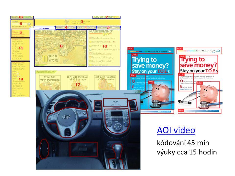 AOI video kódování 45 min výuky cca 15 hodin