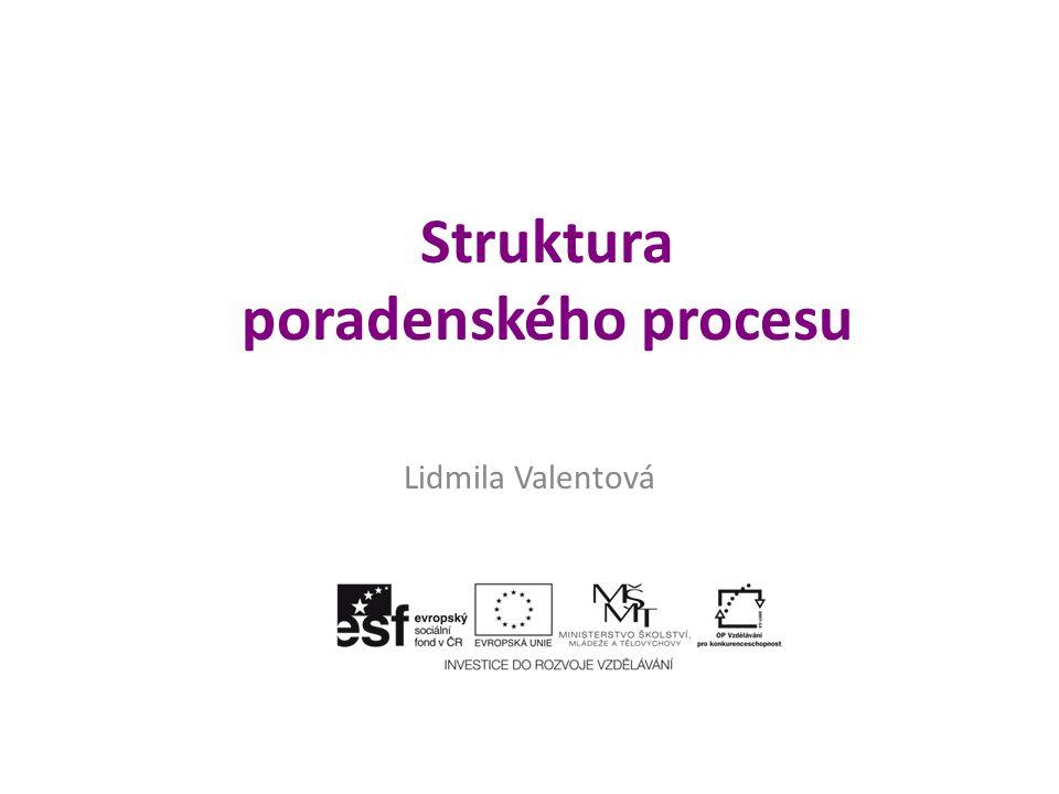 Struktura poradenského procesu Lidmila Valentová