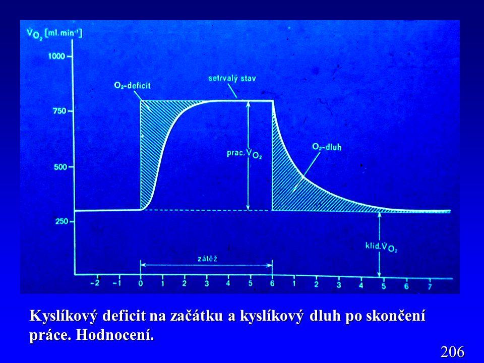 Kyslíkový deficit na začátku a kyslíkový dluh po skončení práce. Hodnocení. 206