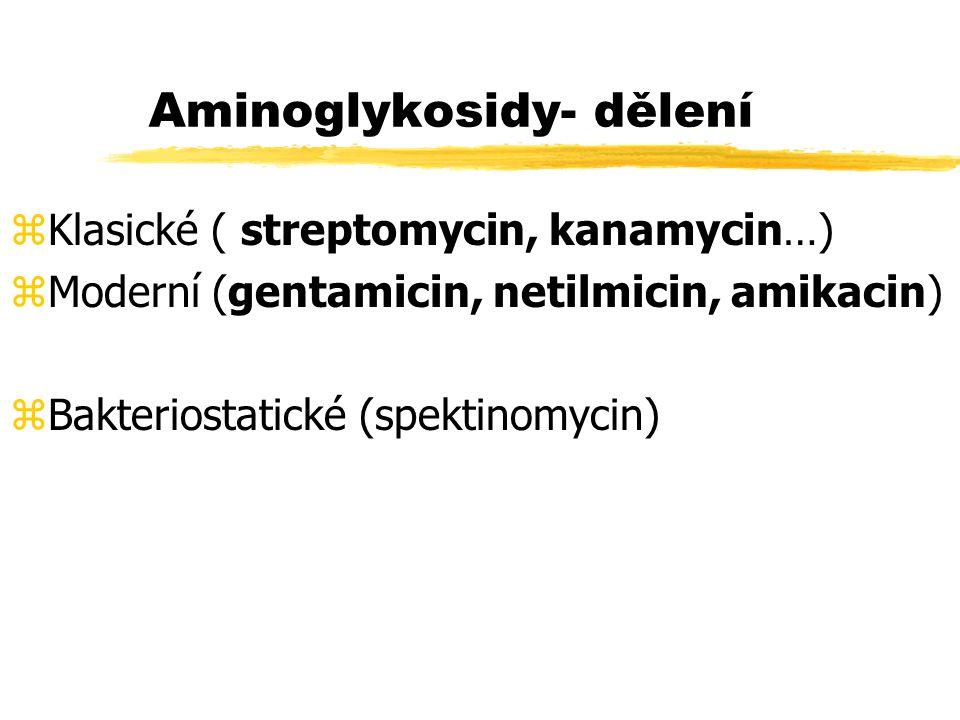 Aminoglykosidy- dělení zKlasické ( streptomycin, kanamycin…) zModerní (gentamicin, netilmicin, amikacin) zBakteriostatické (spektinomycin)