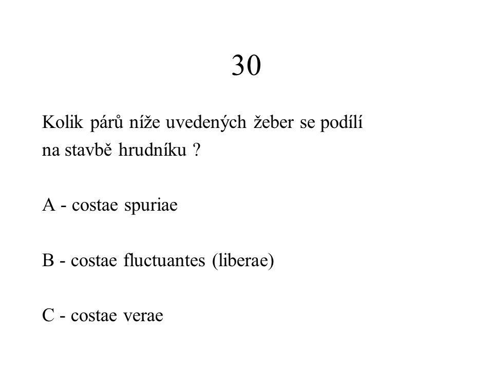 30 Kolik párů níže uvedených žeber se podílí na stavbě hrudníku ? A - costae spuriae B - costae fluctuantes (liberae) C - costae verae