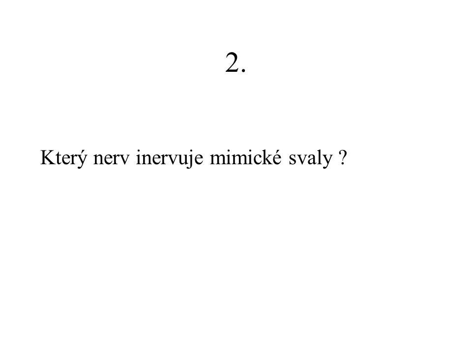 2. Který nerv inervuje mimické svaly ?