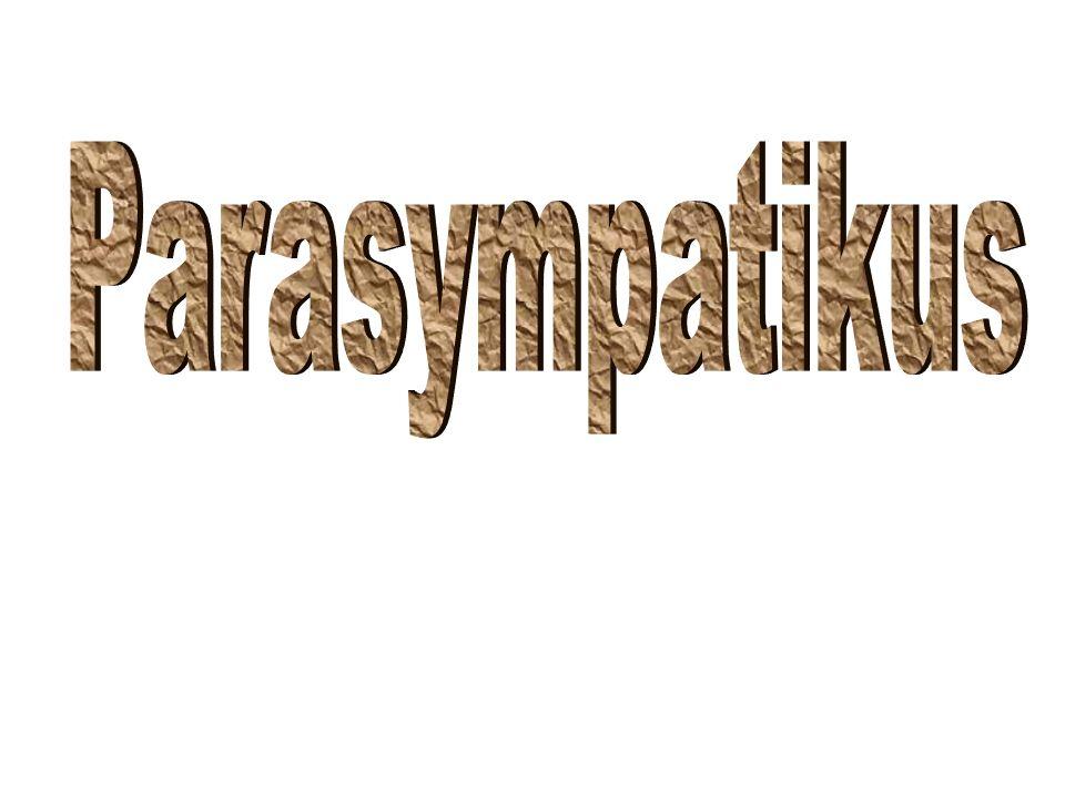 Indikace I.Parkinsonismus, pomocná terapie vedle látek ovlivňujících aktivně dopaminergní systém.