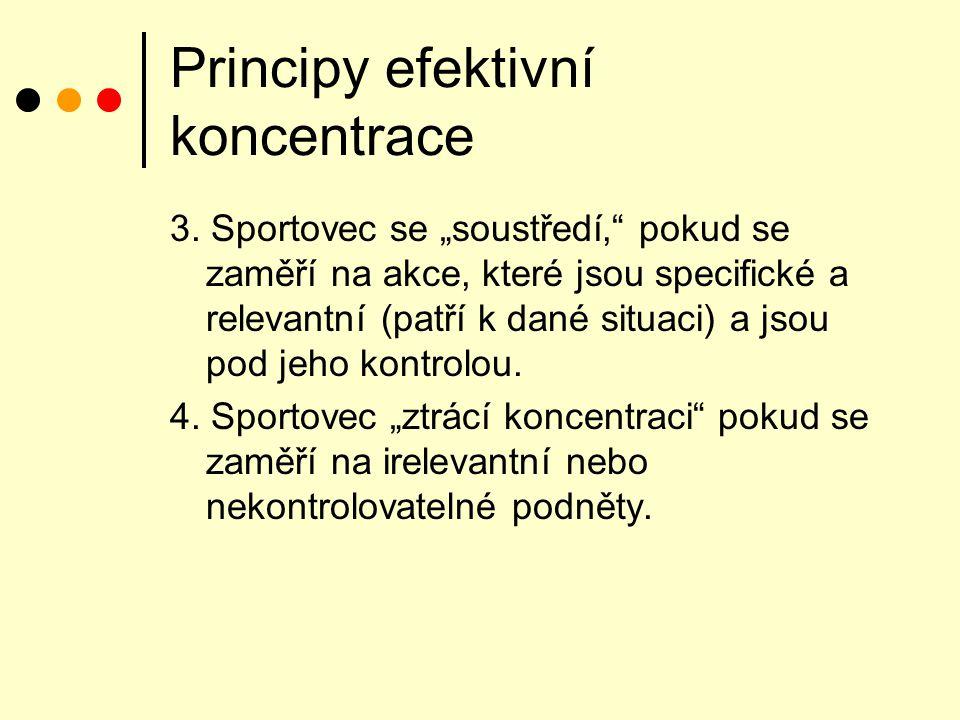 Principy efektivní koncentrace 3.