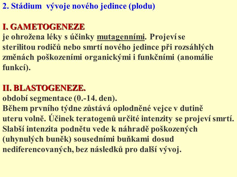 2. Stádium vývoje nového jedince (plodu) I. GAMETOGENEZE je ohrožena léky s účinky mutagenními. Projeví se sterilitou rodičů nebo smrtí nového jedince