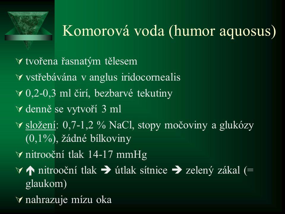 Komorová voda (humor aquosus)  tvořena řasnatým tělesem  vstřebávána v anglus iridocornealis  0,2-0,3 ml čirí, bezbarvé tekutiny  denně se vytvoří