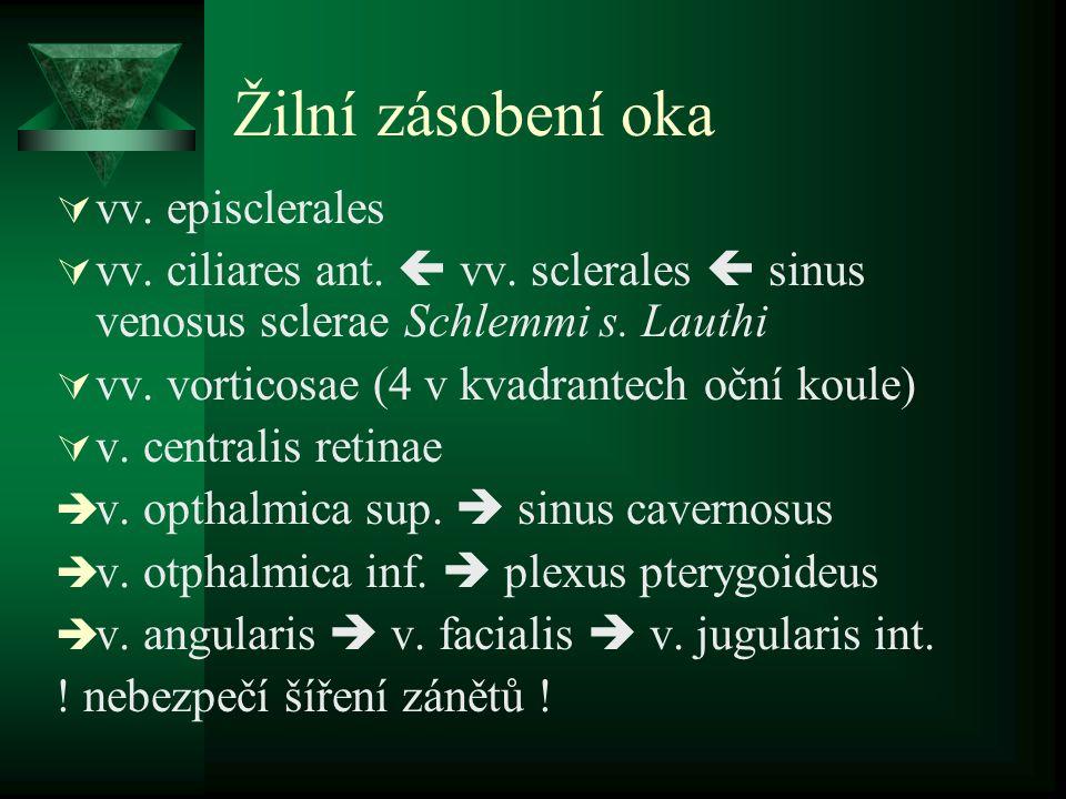 Žilní zásobení oka  vv. episclerales  vv. ciliares ant.  vv. sclerales  sinus venosus sclerae Schlemmi s. Lauthi  vv. vorticosae (4 v kvadrantech