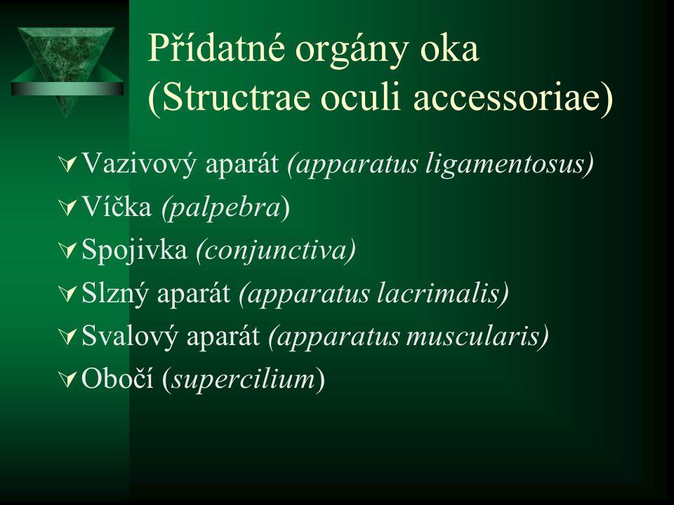 Přídatné orgány oka (Structrae oculi accessoriae)  Vazivový aparát (apparatus ligamentosus)  Víčka (palpebra)  Spojivka (conjunctiva)  Slzný apará
