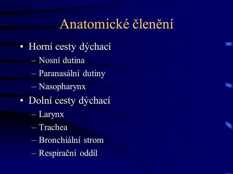 Nosní dutina inervace Senzorická – n.