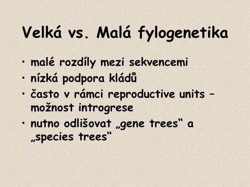 """Velká vs. Malá fylogenetika malé rozdíly mezi sekvencemi nízká podpora kládů často v rámci reproductive units – možnost introgrese nutno odlišovat """"ge"""