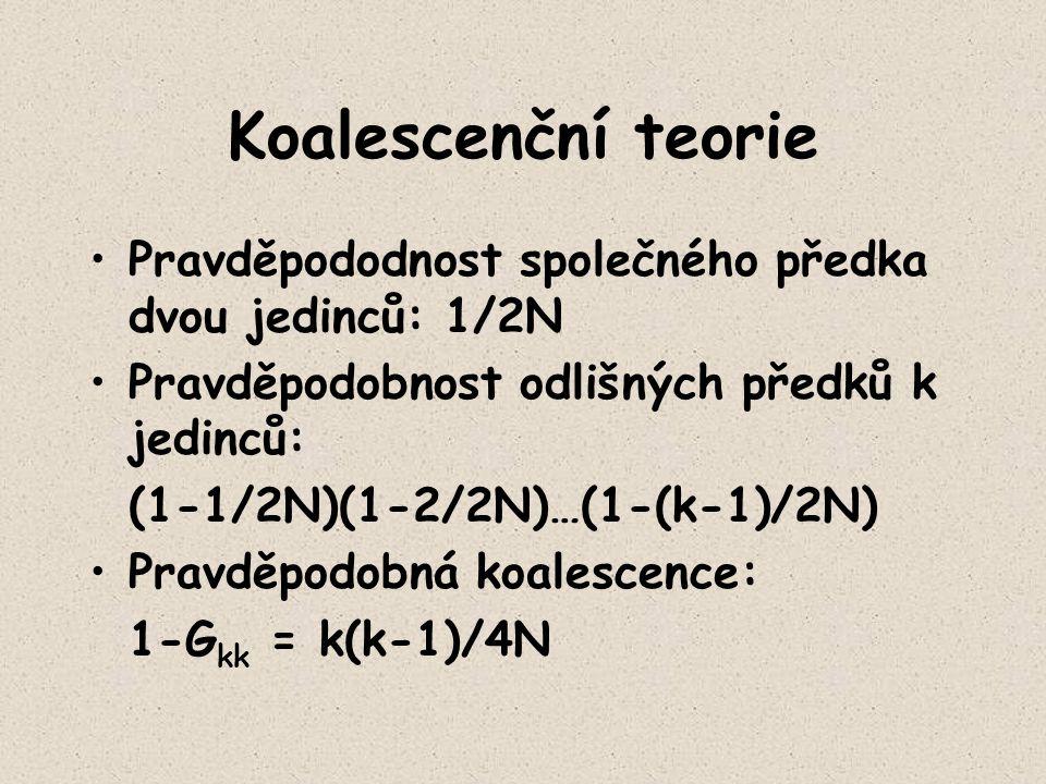 Koalescenční teorie Pravděpododnost společného předka dvou jedinců: 1/2N Pravděpodobnost odlišných předků k jedinců: (1-1/2N)(1-2/2N)…(1-(k-1)/2N) Pra