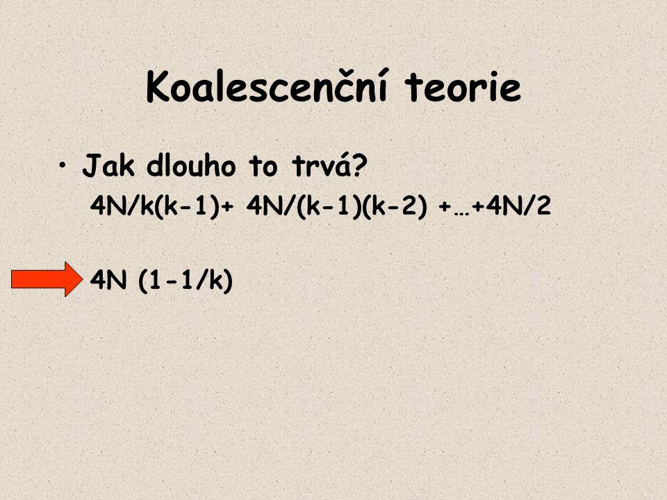 Koalescenční teorie Jak dlouho to trvá? 4N/k(k-1)+ 4N/(k-1)(k-2) +…+4N/2 4N (1-1/k)