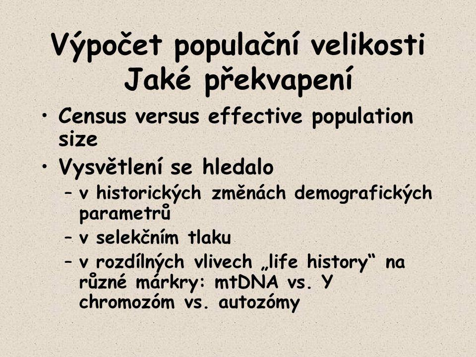 Výpočet populační velikosti Jaké překvapení Census versus effective population size Vysvětlení se hledalo –v historických změnách demografických param