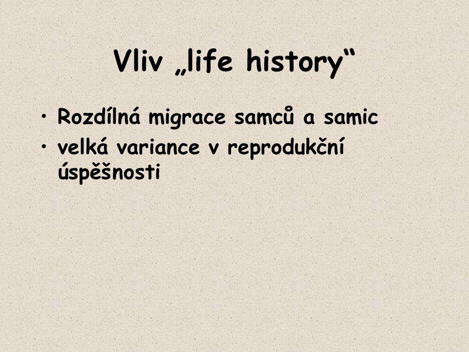 """Vliv """"life history"""" Rozdílná migrace samců a samic velká variance v reprodukční úspěšnosti"""