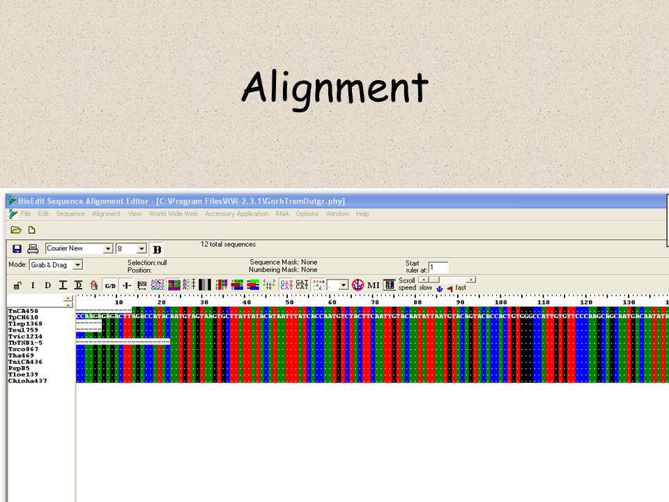 Koalescenční teorie dvě náhodné kopie genu budou sdílet MRCA průměrně za 2N generací za 4N generací by měly všechny linie splynout