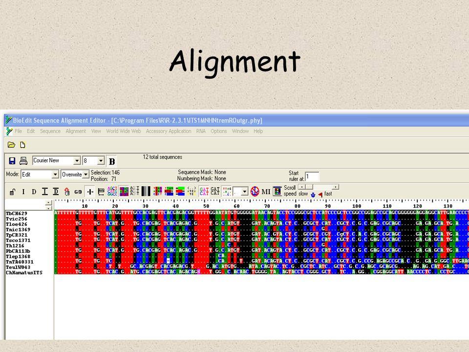 Datování událostí Klasické molekulární hodiny –LRT test linearised tree –ML test local rates v každém uzlu a optimalisace parametrů Malá divergence – nutno brát v potaz lineage sorting a stochasticitu akumulace mutací