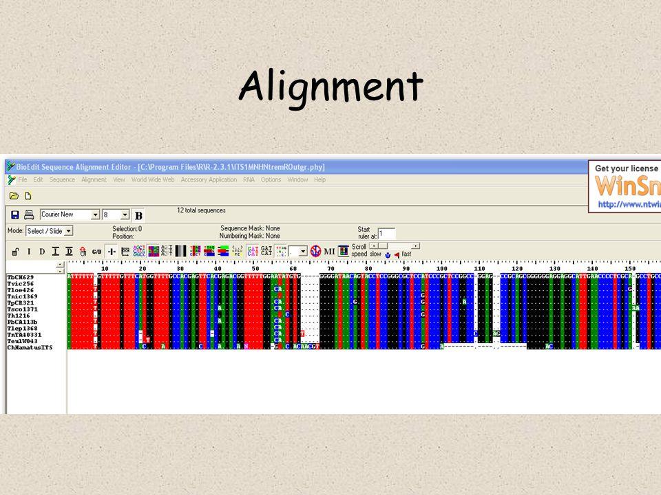 Datování událostí Malá divergence – nutno brát v potaz lineage sorting a stochasticitu akumulace mutací –tradiční Neiův přístup –Moment methods –ML methods