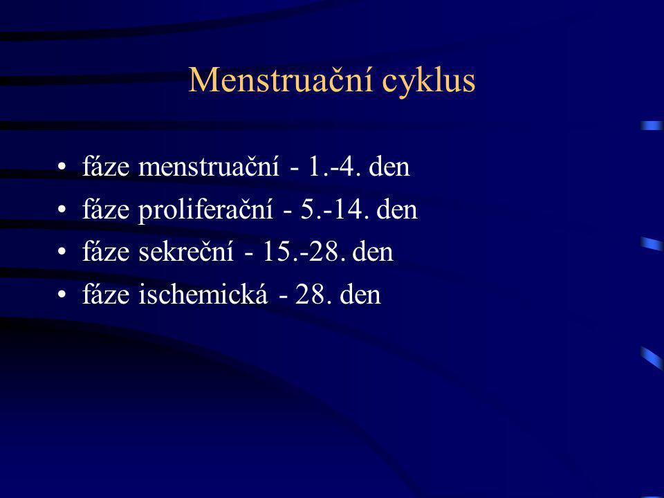 Menstruační cyklus fáze menstruační - 1.-4. den fáze proliferační - 5.-14. den fáze sekreční - 15.-28. den fáze ischemická - 28. den