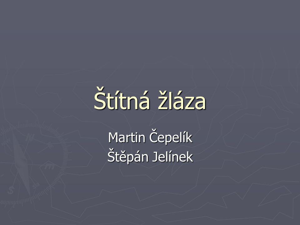 Štítná žláza Martin Čepelík Štěpán Jelínek