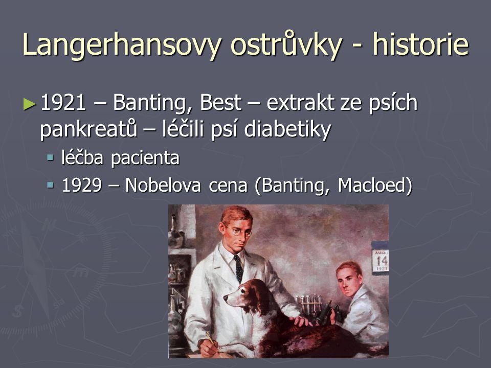 Langerhansovy ostrůvky - historie ► 1921 – Banting, Best – extrakt ze psích pankreatů – léčili psí diabetiky  léčba pacienta  1929 – Nobelova cena (