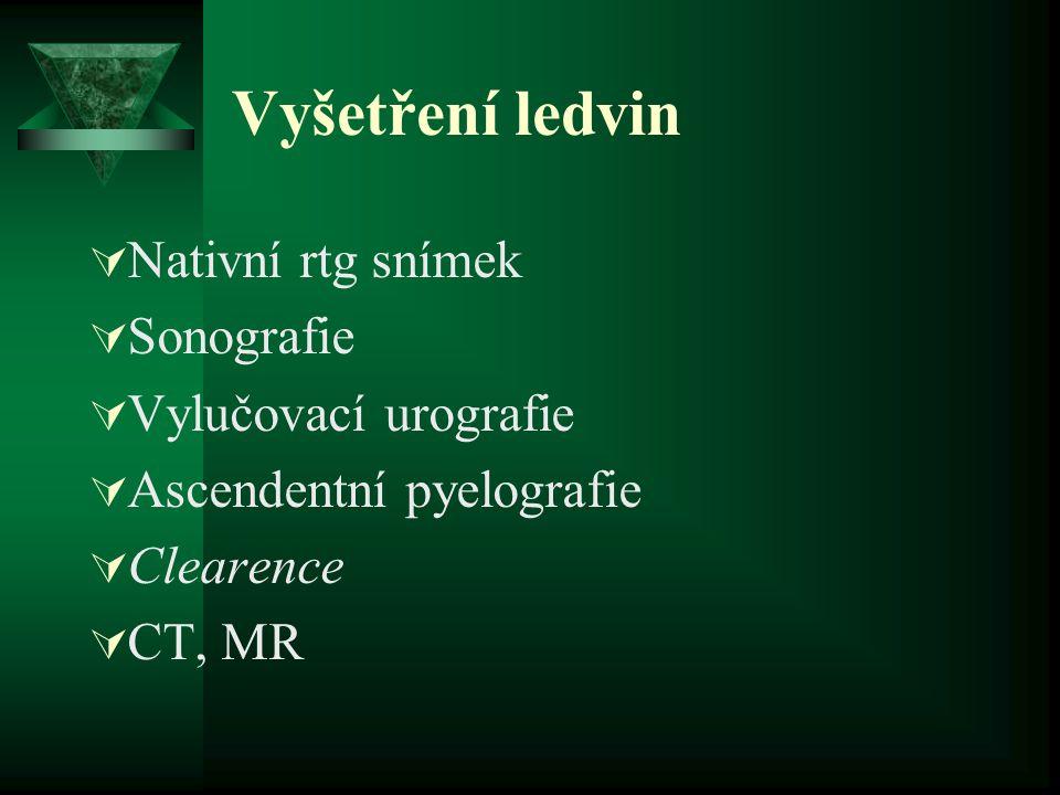 Vyšetření ledvin  Nativní rtg snímek  Sonografie  Vylučovací urografie  Ascendentní pyelografie  Clearence  CT, MR