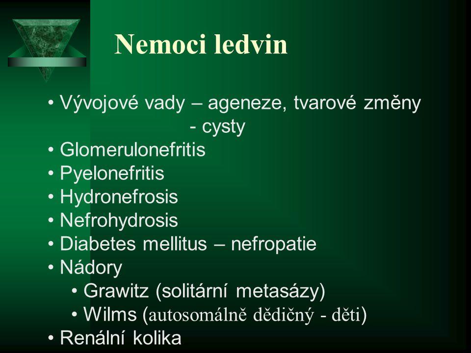 Nemoci ledvin Vývojové vady – ageneze, tvarové změny - cysty Glomerulonefritis Pyelonefritis Hydronefrosis Nefrohydrosis Diabetes mellitus – nefropati