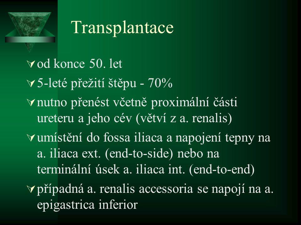 Transplantace  od konce 50. let  5-leté přežití štěpu - 70%  nutno přenést včetně proximální části ureteru a jeho cév (větví z a. renalis)  umístě