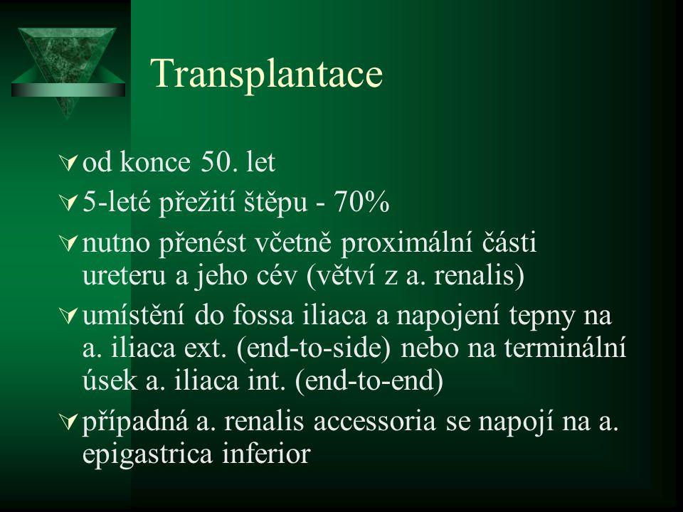 Transplantace  od konce 50.
