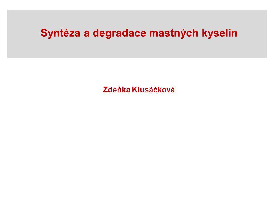 Syntéza a degradace mastných kyselin Zdeňka Klusáčková