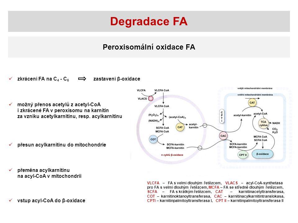 Degradace FA Peroxisomální oxidace FA zkrácení FA na C 4 - C 6 možný přenos acetylů z acetyl-CoA i zkrácené FA v peroxisomu na karnitin za vzniku acet